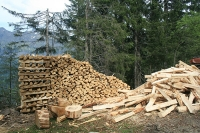 UK Timber Prices Expected To Continue Upward Trend