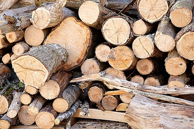 EU timber Imports Rise To Highest Level