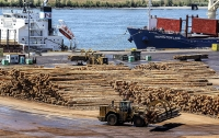 Timber Exports Continue Uptrend